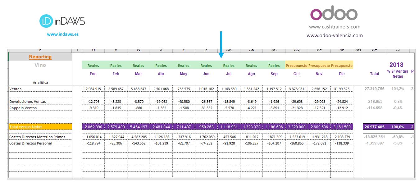 control-presupuestario-año-completo-con-reales-y-previsiones.
