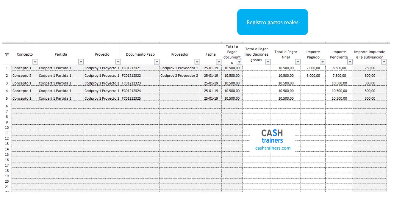 tabla-registro-gastos-ONGs-plantilla-excel