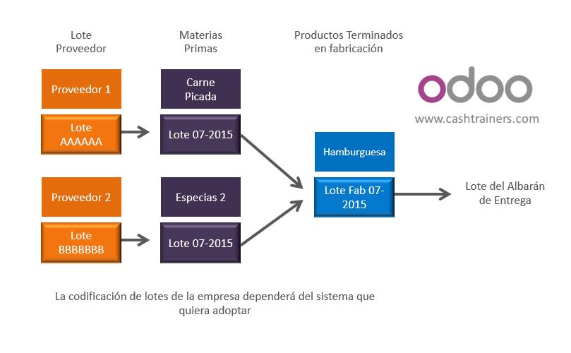 Proceso-Gestión-Trazabilidad-y-Lotes-ERP-ODOO