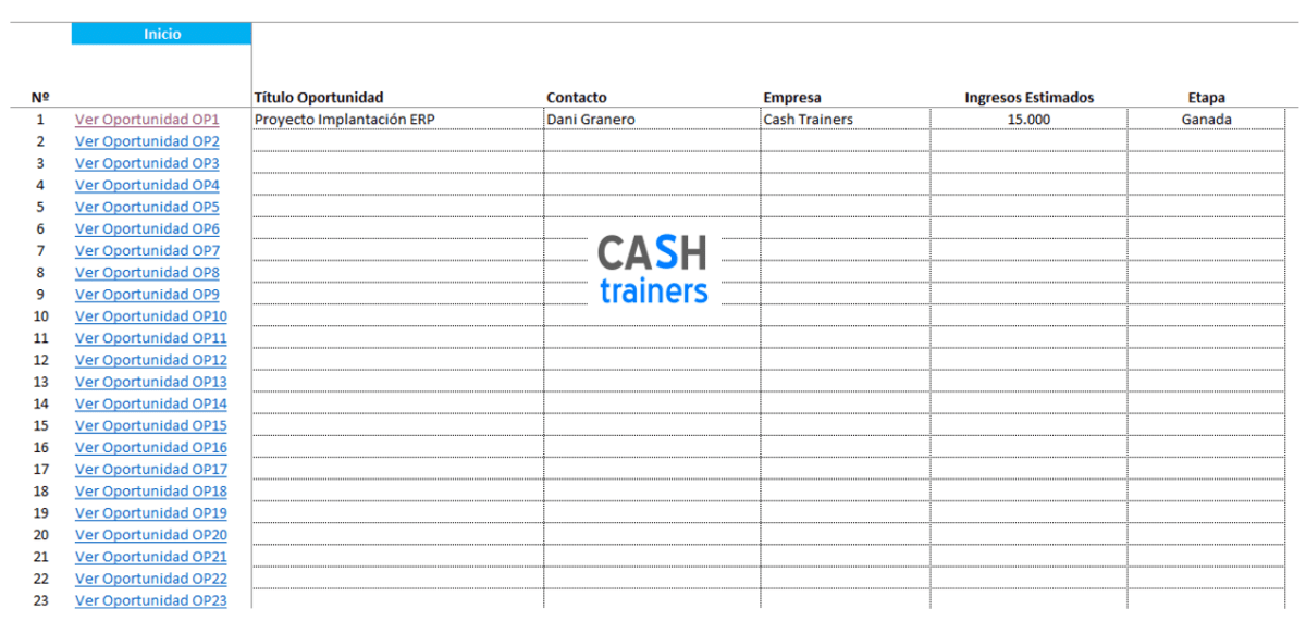 Plantilla-Excel-Gestión-oportunidades-y-acciones-comerciales-CRM-M2-3