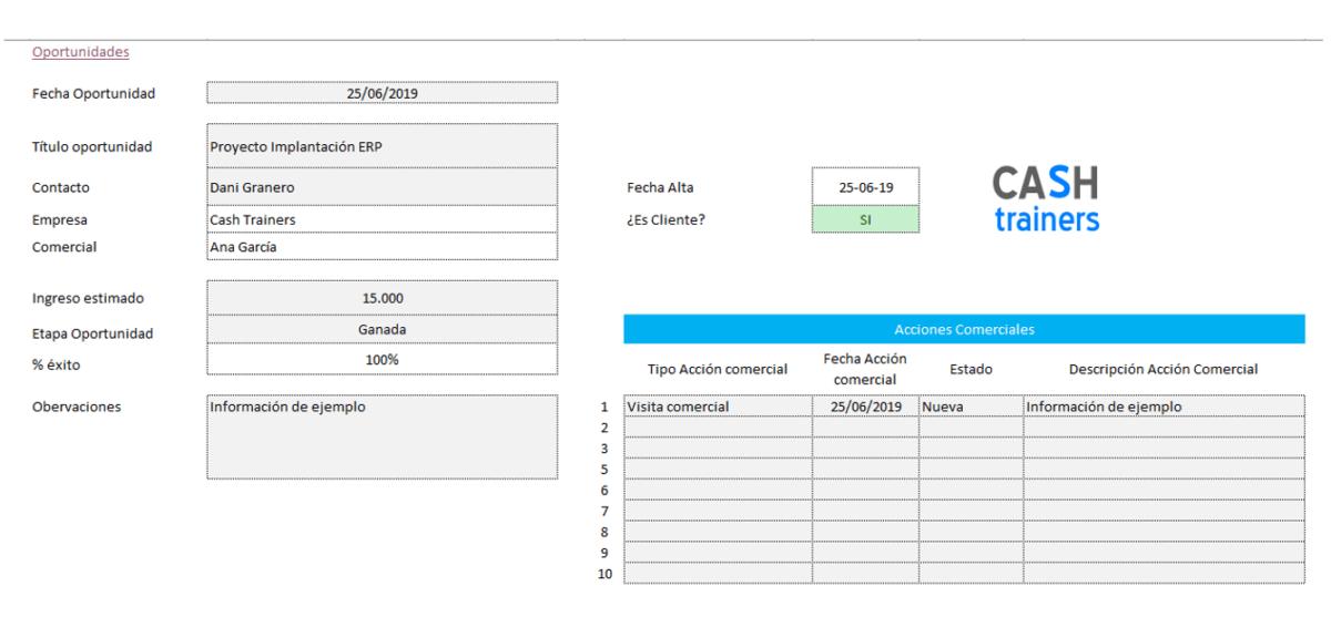 Plantilla-Excel-Gestión-oportunidades-y-acciones-comerciales-CRM-M2-4