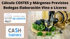 Cálculo Costes Previstos Bodegas Vino
