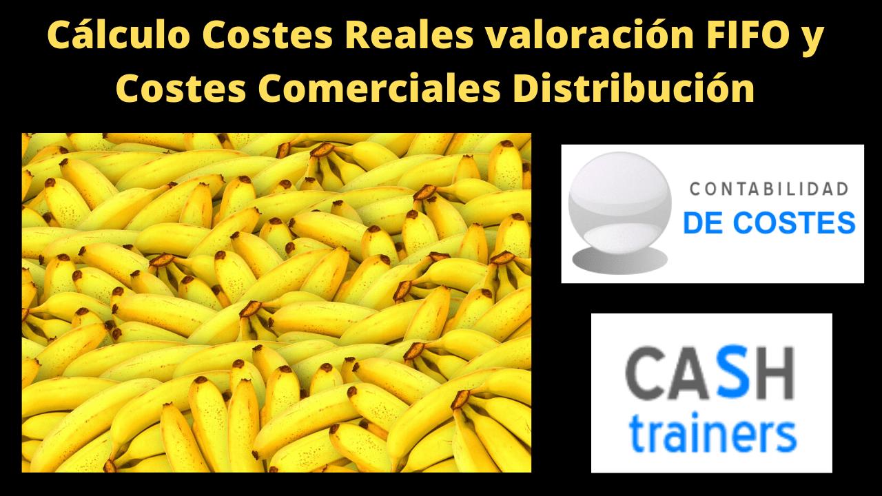 Cálculo Costes Reales Distribución FIFO