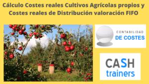 Costes cultivos agrícolas y costes de distribución